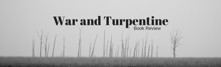 war and turpentine stefan hertmans book review